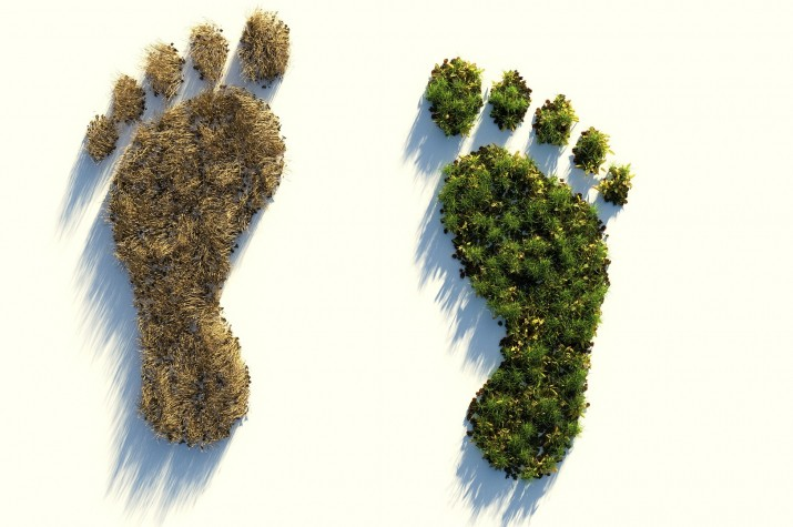 ecological-footprint-4123696_1920.jpg
